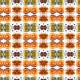 Succulent de kaléidoscope Images libres de droits