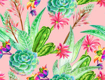 Succulent design, seamless pattern. Seamless pattern with succulents and cactuses. Blossoming succulents design in watercolor illustration. succulents bouquets Royalty Free Stock Photos