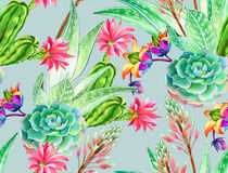 Succulent design, seamless pattern. Seamless pattern with succulents and cactuses. Blossoming succulents design in watercolor illustration. succulents bouquets Royalty Free Stock Photo