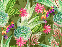 Succulent design, seamless pattern. Seamless pattern with succulents and cactuses. Blossoming succulents design in watercolor illustration. succulents bouquets Stock Image