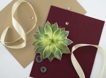Succulent en document Royalty-vrije Stock Afbeeldingen