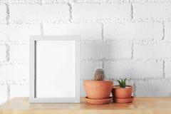 Succulent et cactus avec le cadre de photo image libre de droits