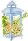 Succulent and fern bouquet in the blue lantern. Royalty Free Stock Images