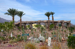 Succulent garden on site in Egypt Royalty Free Stock Photography