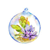 Succulent in glass ball. Watercolor. Succulent plant in glass ball. Water color stock photo