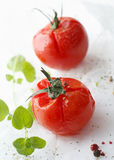 Succulent grilled cherry tomatoes stock photos