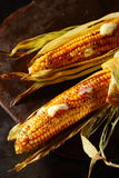 Succulent grilled corncobs with butter stock photo