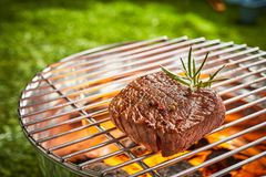 Succulent medallion of prime beef fillet steak royalty free stock photos