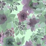 Succulent Patroon Royalty-vrije Stock Fotografie