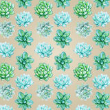 Succulent pattern on a biege background Royalty Free Stock Images