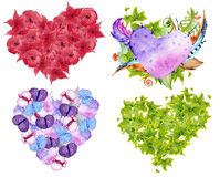 Succulent plants, cactus,  red flowers, green leaves and feathers in the shape of a heart. Royalty Free Stock Photography
