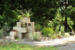 Succulent plants inside center blocks in a succulent garden. Many succulent plants inside a center block planters. Inside a succulent garden. Also tree in the stock image