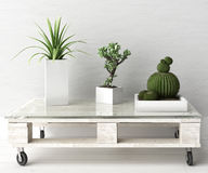 Succulent plants on pallet coffee table. 3d illustration Royalty Free Stock Photos