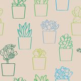 Succulent plants seamless pattern vector illustration royalty free stock photos