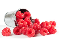 Succulent Raspberries Royalty Free Stock Photos