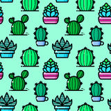 Succulent seamless pattern, vector illustration Stock Photography