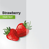 Succulent strawberries Stock Images