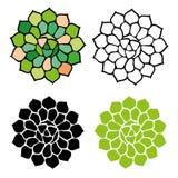 Succulent symbol illustration. Clip-art succulent illustration set black green Royalty Free Stock Photos