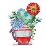 Succulente de installatiesamenstelling van de waterverf met de hand geschilderde bloesem vector illustratie