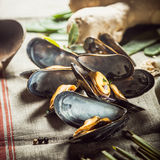 Succulente gekookte mosselen voor een zeevruchtenaanzet Royalty-vrije Stock Foto's