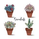 Succulenti in vasi di argilla insieme Grafici con l'acquerello Vettore illustrazione di stock