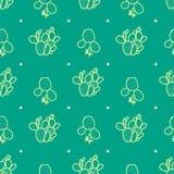 Succulents στην κίτρινη περίληψη κρητιδογραφιών και ρόδινο σημείο κρητιδογραφιών σε πράσινο Στοκ φωτογραφίες με δικαίωμα ελεύθερης χρήσης