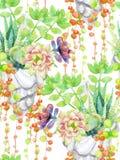 Succulents акварели бесплатная иллюстрация