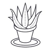 Succulents, aloe pot vector line icon, sign, illustration on background, editable strokes Royalty Free Stock Images