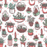 Succulents And Cacti Color Sketch Pattern Royalty Free Stock Images