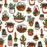 Succulents And Cacti Color Sketch Pattern Royalty Free Stock Photography