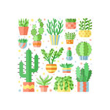 Succulents and cacti flat style multicolored square vector illustration. Minimalistic design. Royalty Free Stock Photography