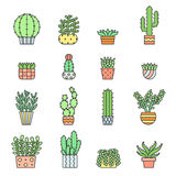Succulents and cacti outline multicolored vector icons set. Minimalistic design. Royalty Free Stock Images