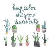 Succulents and calligraphy quote keep calm and grow succulents . Hand drawn Set of cactus, succulents and calligraphy quote keep calm and grow succulents Royalty Free Stock Image