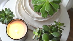 Succulents and candles, cozy white scandinavian home decoration closeup stock footage