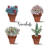 Succulents in clay pots. Set. Graphics with watercolor. Vector. Succulents in clay pots. Set. Graphics with watercolor. Vector stock illustration