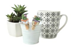 Succulents, cup and flower bucket stock image