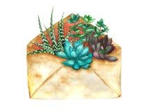 Succulents d'aquarelle dans l'enveloppe Image libre de droits
