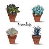 Succulents in den Tongefäßen set Grafiken mit Aquarell Vektor lizenzfreie abbildung