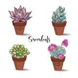 Succulents en potes de arcilla conjunto Gráficos con la acuarela Vector stock de ilustración