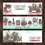 Succulents en van de Cactussenkleur Schetsbanners Stock Afbeelding