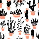 Succulents et usines de cactus Modèle sans couture de vecteur avec le cactus de bande dessinée de jardin Images libres de droits