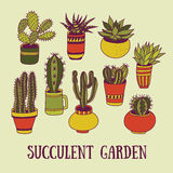 Succulents garden. Set of succulents in pots. Hand-drawn vector illustration stock illustration