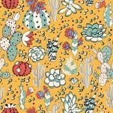 Succulents in gele woestijn Stock Afbeeldingen
