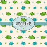 Succulents, Hintergrund mit ovalem Rahmen für Text lizenzfreie abbildung