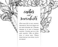Succulents linéaires d'american national standard de cactus de croquis Photos stock