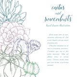 Succulents linéaires d'american national standard de cactus de croquis illustration stock
