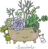 Succulents lindos de la historieta en pote Foto de archivo