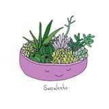 Succulents lindos de la historieta en pote Imagen de archivo