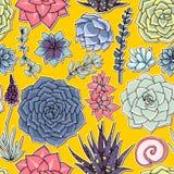 Succulents naadloos patroon Succulent ornament Royalty-vrije Stock Foto