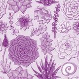 Succulents naadloos patroon Succulent ornament Royalty-vrije Stock Afbeeldingen